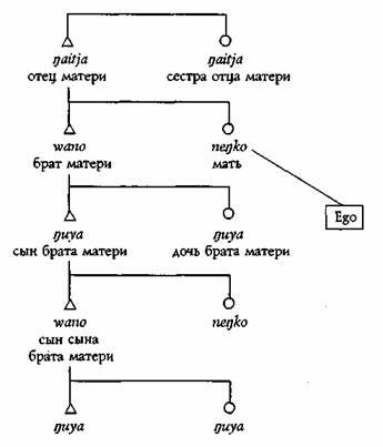 А. Р. Рэдклифф-Браун=СТРУКТУРА