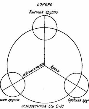Перейдем теперь к третьей схеме (рис. 15), где формализация социальной структуры бороро произведена согласно модели...