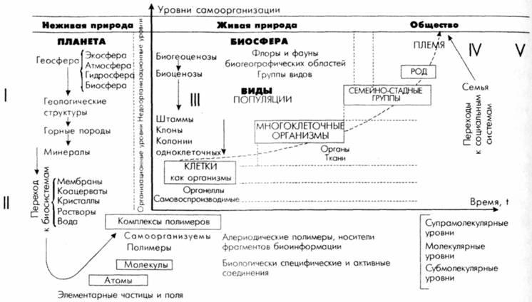 Прыкин, Борис Владимирович.
