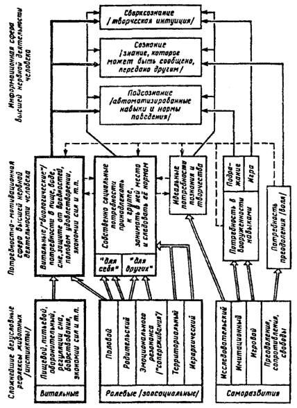 виды рефлексов человека схема