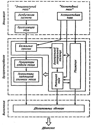 Схема деятельности в психологии фото 357